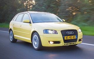 Audi A3 8p Autofaktypl